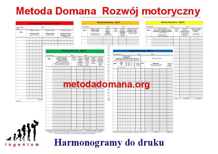 Harmonogram Metody Domana