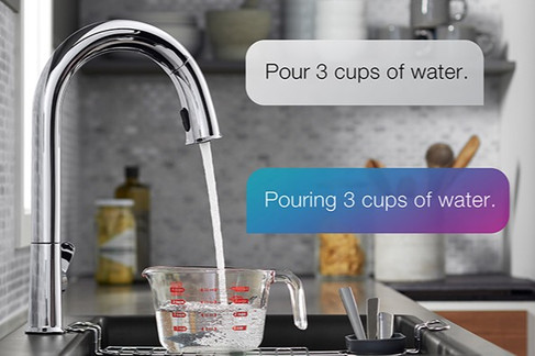 Voice Activated Faucets