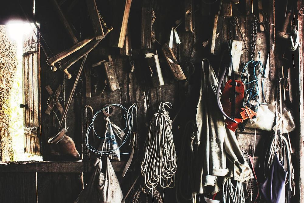tools Ariana Prestes.jpg