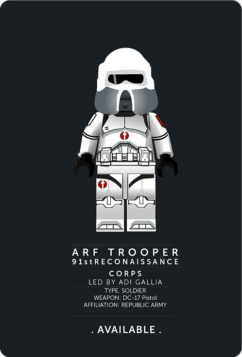91st ARF TROOPER