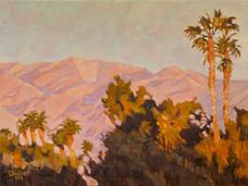 Palm Desert #2