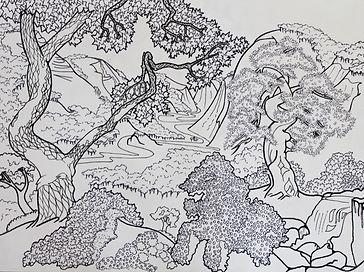 Velika platna ručno iscrtana crno-bijelim crtežima čekaju na vaše boje. Bojanje za odrasle, opustite se uz antistresno bojanje u društvu
