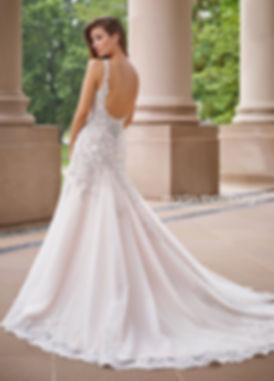 Wedding Dress, Sophia Tolli, Mon Cheri, Y11877 Pegasus
