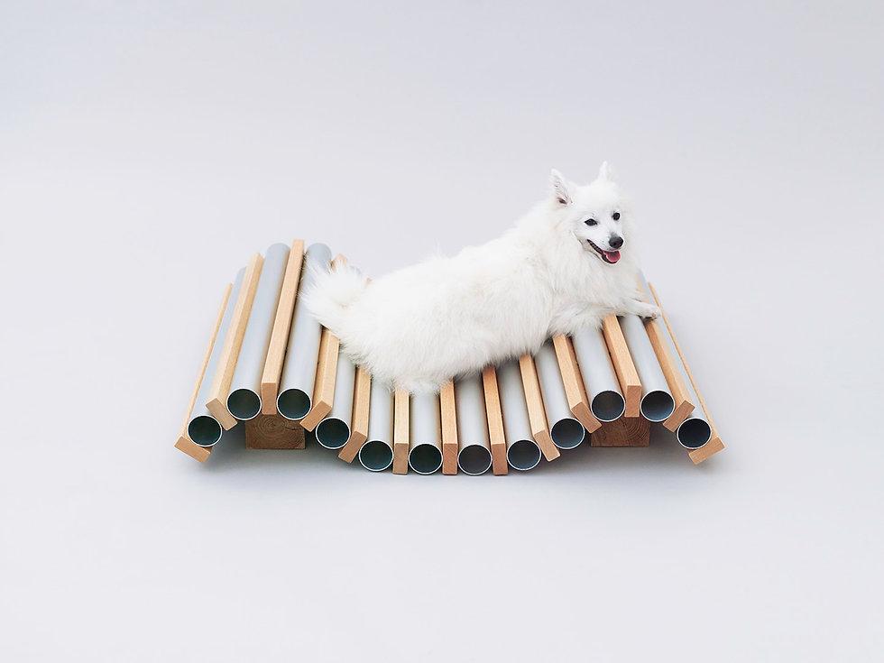 Dog Cooler,AFD,Hiroshi NAITŌ,Spitz