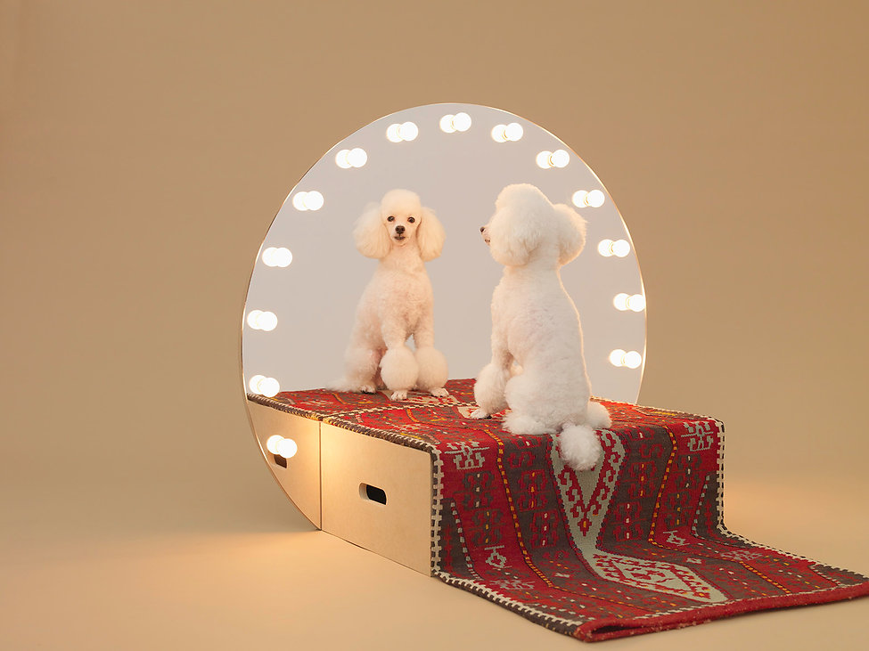 AFD,Hara Design Institute, Toy Poodle,Make up mirror, Konstantin GRCIC