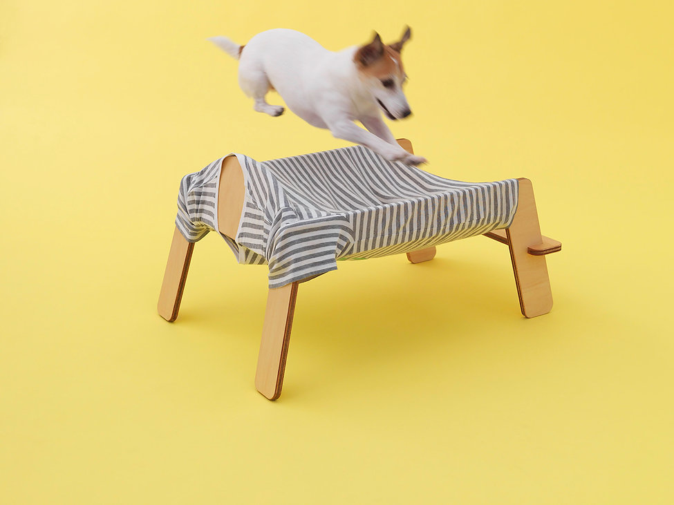 AFD,HARA Design Institute,Jack Russell