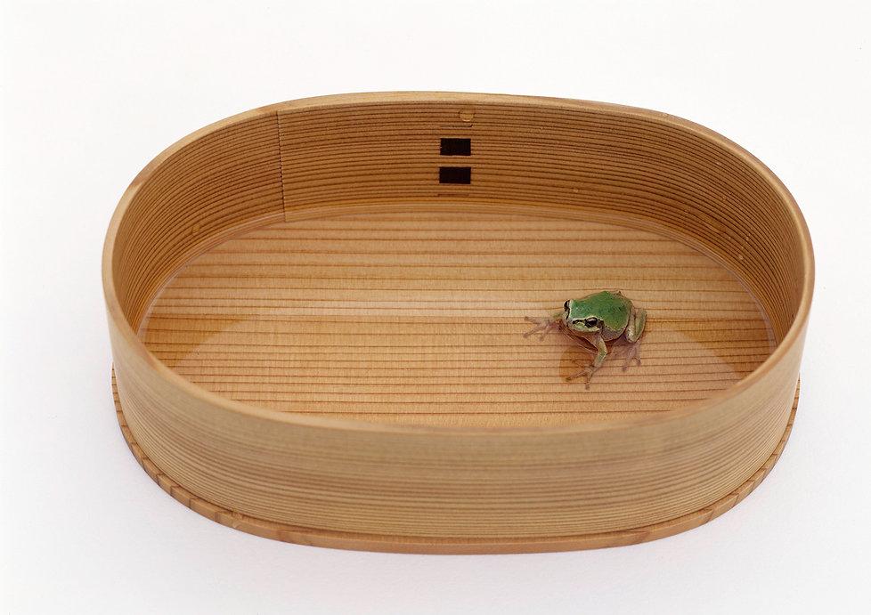Mui Book,Masaaki HIROMURA,Kazuko KOIKE,Frog,Wappa,Wooden containr,Wooden lunch box