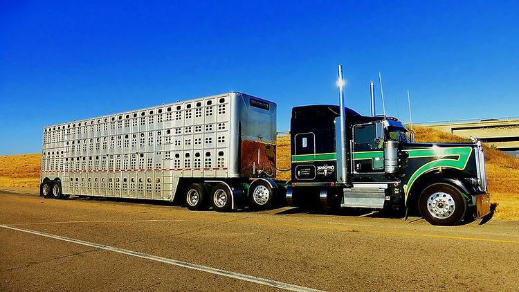 truck-3492157_960_720.jpg