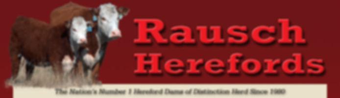 rausch_header.jpg