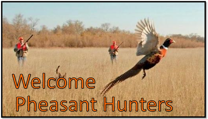 Welcome_Pheasant.PNG