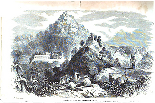general_view_of_Palenque.png