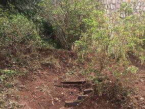 wall stairs.jpg