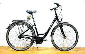 Deluxe Citybike Rental