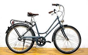 Basic Citybike rental