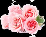 rozen cake vrijstaand.png