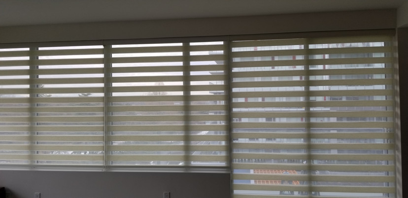 combi blinds(zebra blinds)