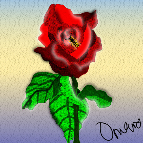 Heart in a Rose