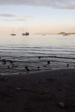Chilean Patagonia shore