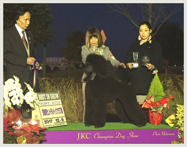 Official win photo from her 2nd BPIS!!.j