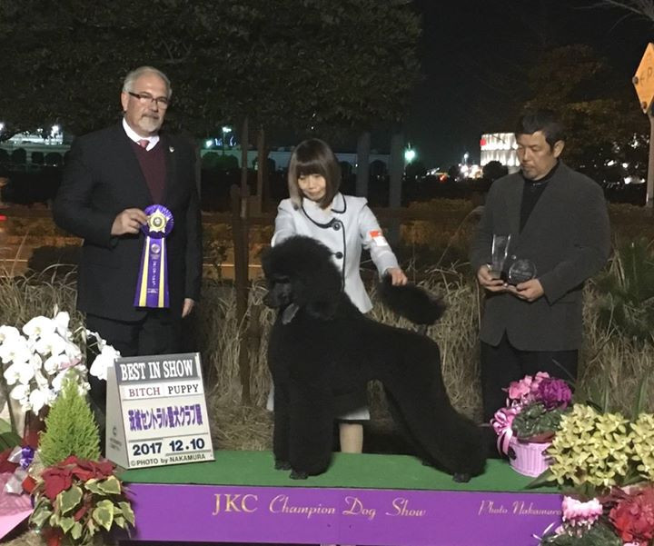 Official win photo of her 3rd all-breed