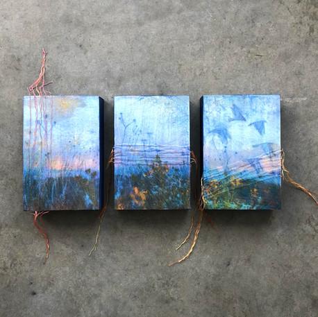 Sophie Lavigne, Il fait bleu 2, 2020