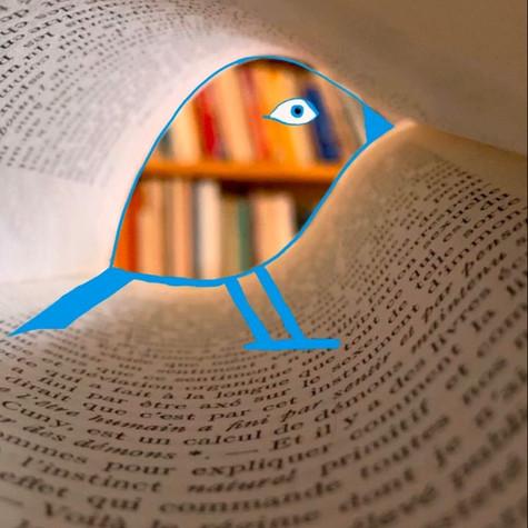 Jacob Lévesque, Les mots s'envolent tels des oiseaux, non daté