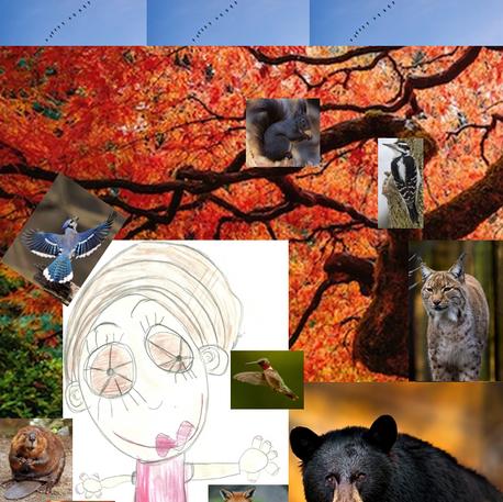 Maëlys Pontlevoy, Dans le monde des animaux, non daté