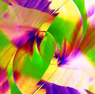 2- Tourbillon des fleurs.jpg