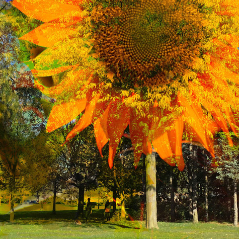 Anne-Julie Hynes, A Walk in the Park, 2020