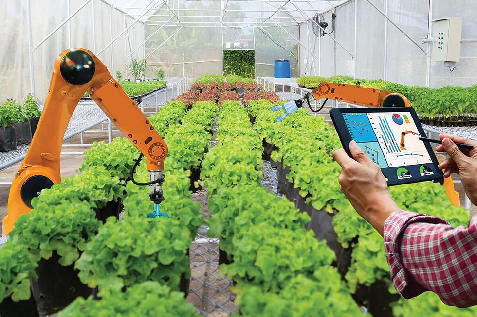 maximum-yield-gruetzmacher-ai-automation