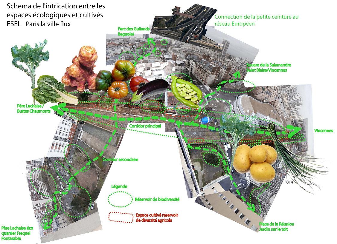 école spéciale  agriculture urbaine, petite ceinture