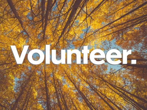 Wellness Wednesday: Volunteer