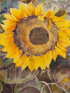 Full Glory_Watercolor_21_5x28_5.jpg