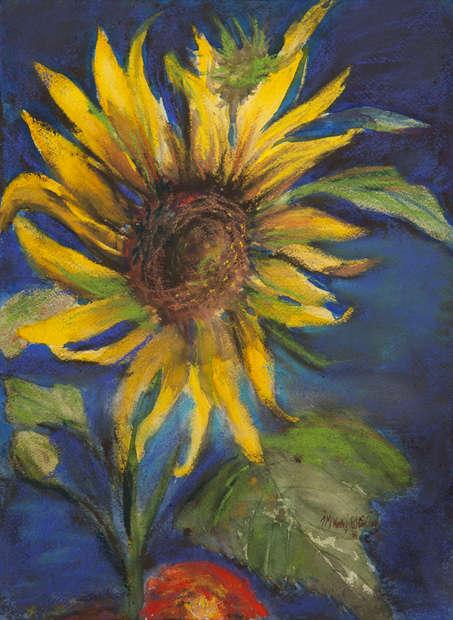 Sunflower 10_25X14.jpg