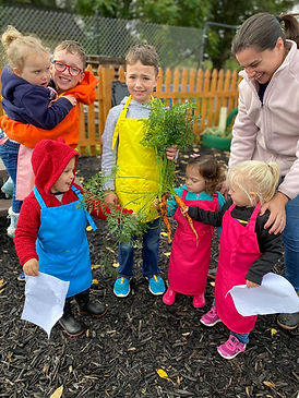 Childrens Garden- Carrots.jpg