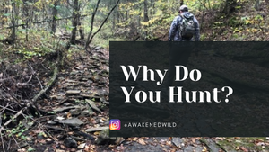 Why Do You Hunt?