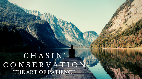 Chasin' Conservation: The Art of Patience.