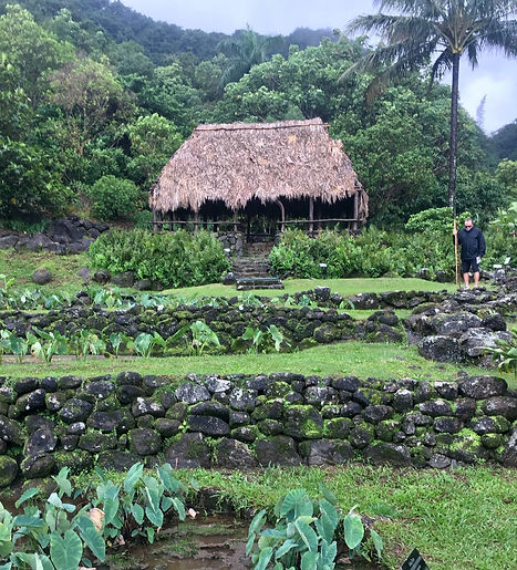 Puhala and the Temple of Refuge, Ancient Hawaii, a child's dream