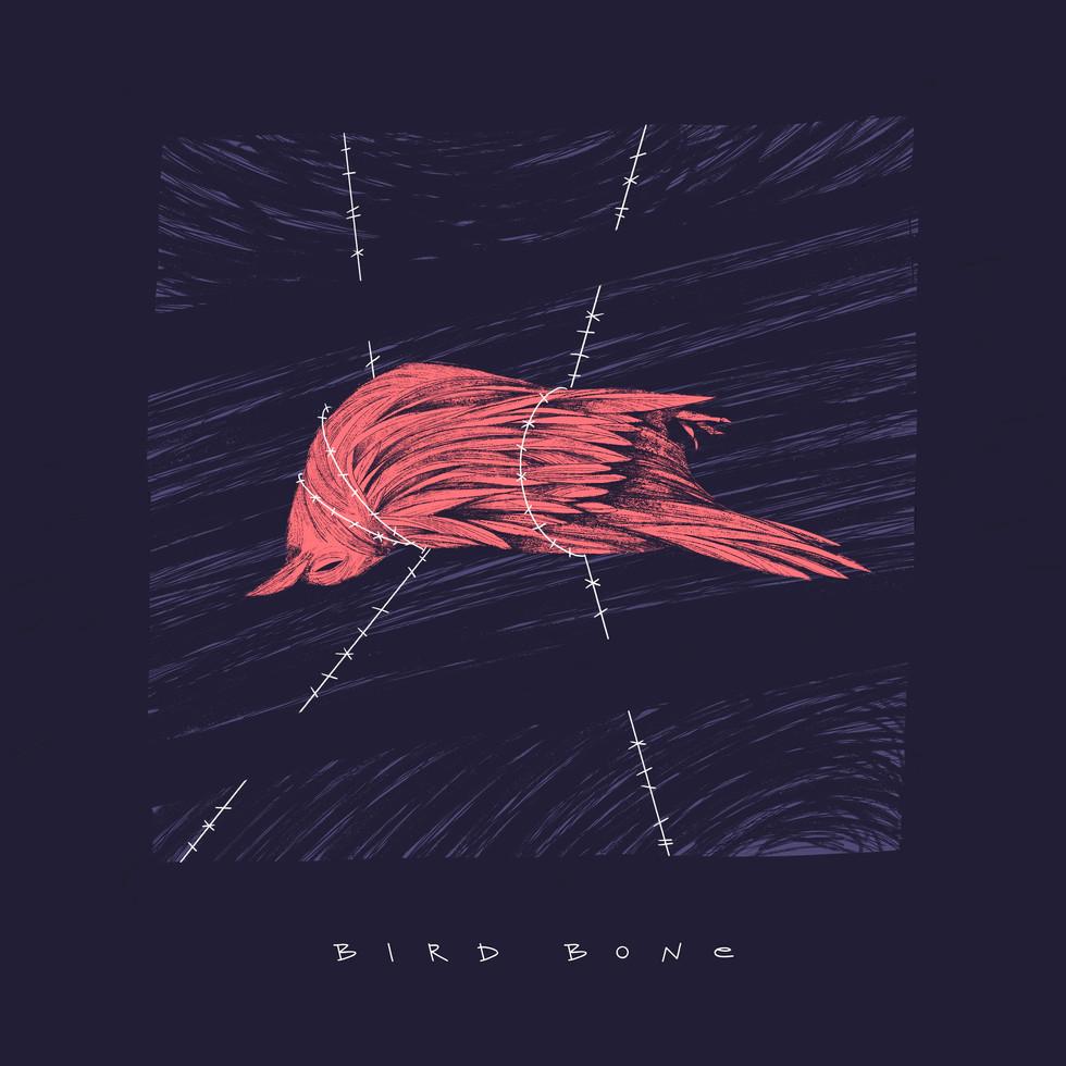 Bird Bone Band