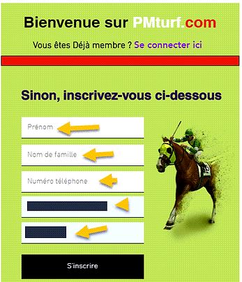 PMturf.com