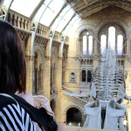 Life in the Dark | Natural History Museum