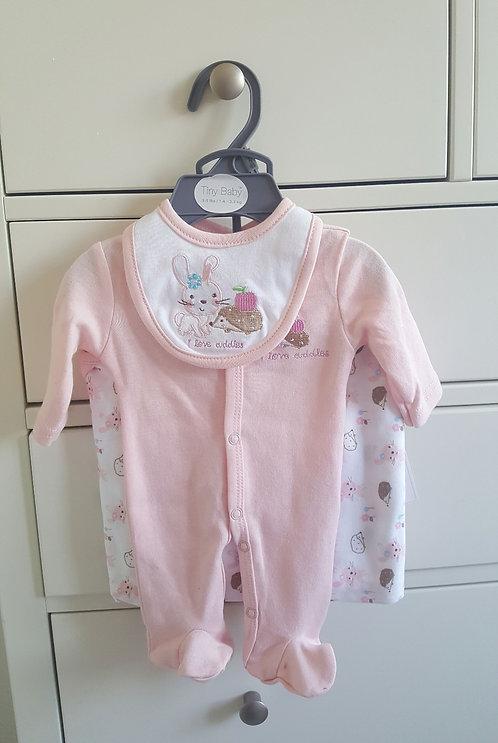 Premature Pink Rabbit Towel Bib Set
