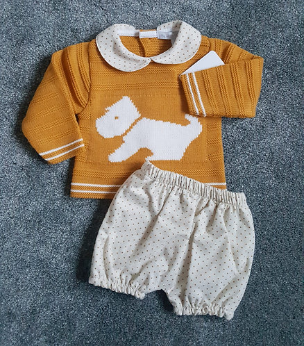 Mustard Doggy Jumper & Cream Shorts Set