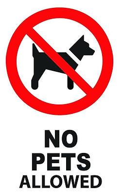 No Pets.jpg