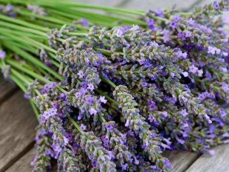 5 Benefits of Aromatherapy:
