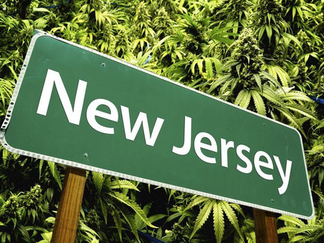 High Times in New Jersey!