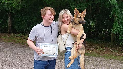 LUOSKO German Shepherd Rescue - Gotcha Day