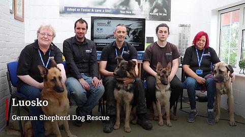 LUOSKO German Shepherd Dog Rescue Team