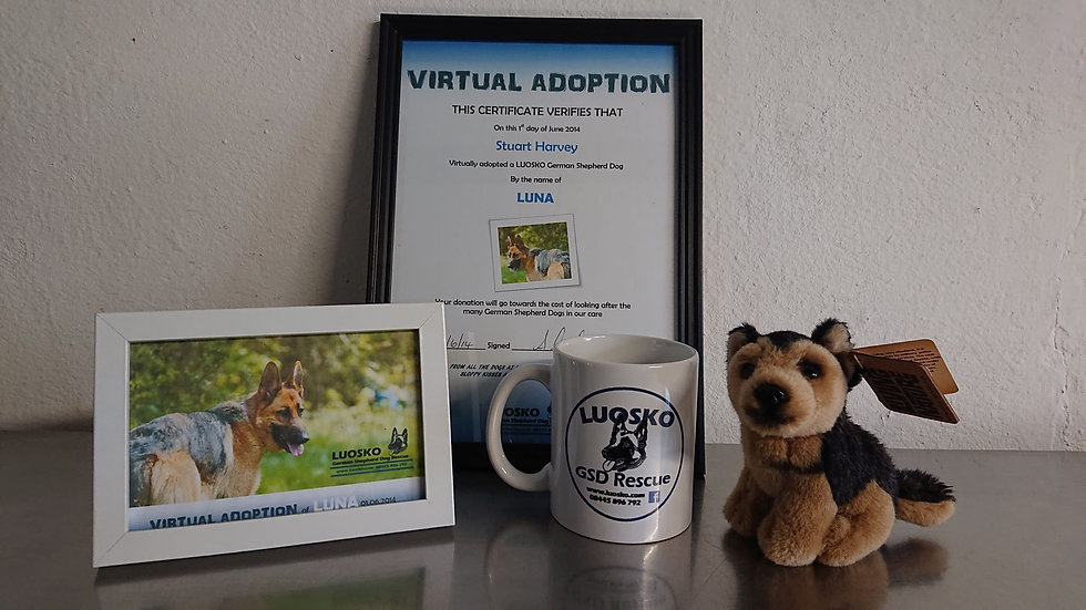 Virtual Adoption of a kennel dog