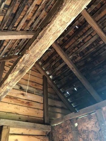 BR Ceiling.JPG
